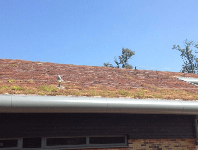 Finished installation of the eco roofing installed at Manor Lodge School