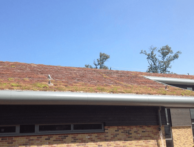 View of the eco roofing installed on the sports building at Manor Lodge School